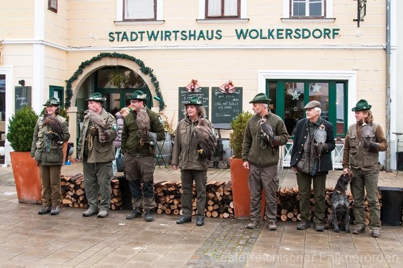 Präsentation der Beizvögel in Wolkersdorf