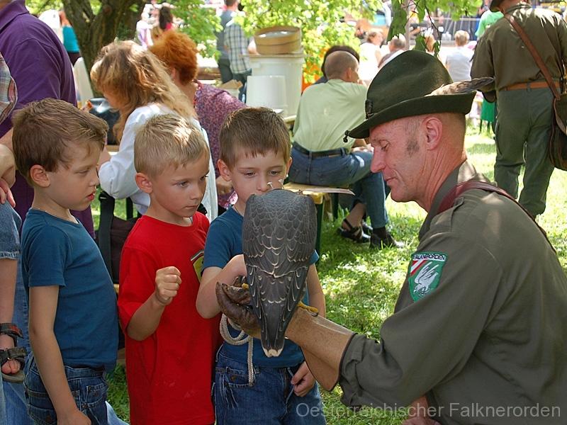 Gerhard zeigt den Falken hautnah