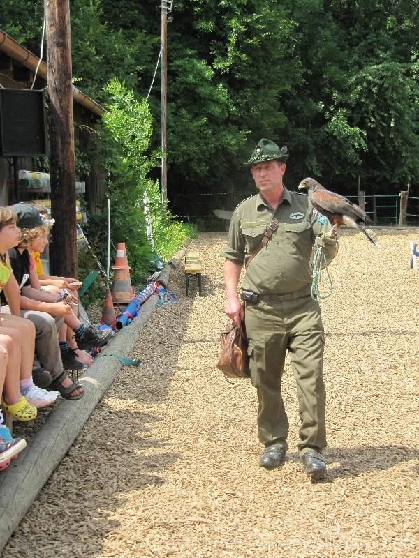 Martin zeigt den Kindern den weiblichen Wüstenbussard.