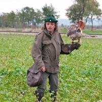 Anspannung bei Falkner und Vogel